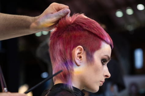Fellowship for British Hairdressing Present for Pro Hair Live 12