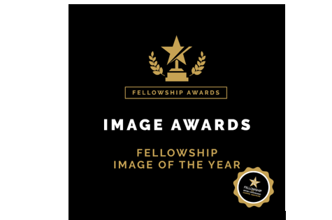 Fellowship for British Hairdressing Image Award is now open! 1