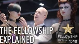 Fellowship Explained